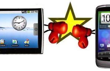 ¿Qué es mejor: una tableta o un teléfono inteligente? Ventajas y desventajas de los diferentes dispositivos