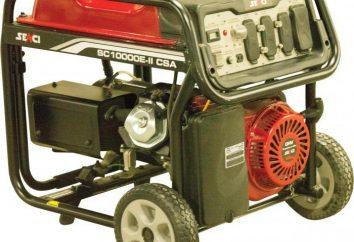 generador de energía de la gasolina para dar (comentarios)