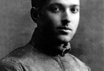 Vygotskiy Lev Semenovich – o famoso psicólogo soviético