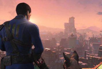 Hyde für das Spiel Fallout 4: wie der Müll entziffern