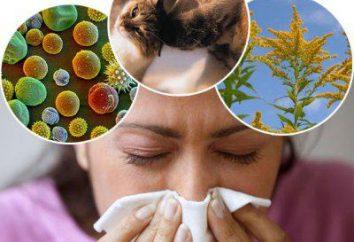 Come distinguere un'allergia da un raffreddore – qual è la differenza