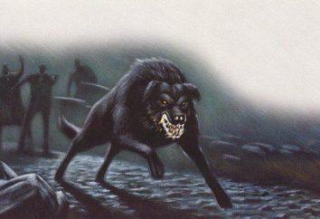 Quelle est la race de chien des Baskerville?