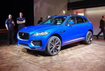 Jeep « Jaguar » – élégant, voiture à grande vitesse pour l'auto-confiance et de réussite commerciale