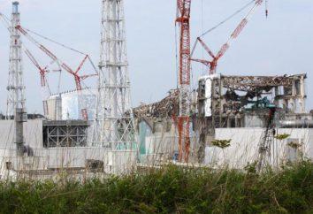 """Roboty wysłane do czystej energii w Fukushima, """"martwy""""!"""