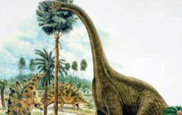 Lo que era dinosaurios herbívoros