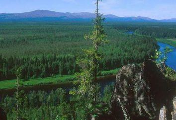 Pechory: panoramici, posizione superiore Pechory, in particolare