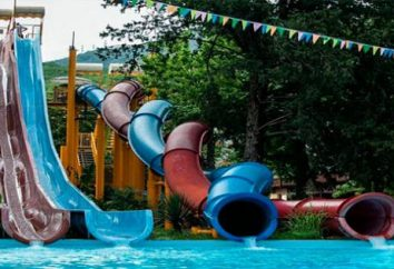 Rozrywka w Lazarev – są emocje, wrażenia, adrenalina