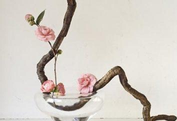 Ikebana con sus manos. Cómo crear un arreglo floral tradicional japonés