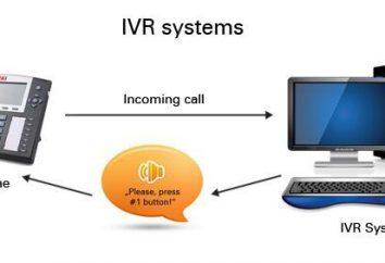 IVR: o que é? Identificação e descodificação
