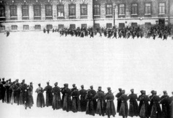 Partito costituzionale democratico: le lezioni della storia