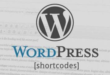 Shortcodes WordPress: przykłady zastosowania