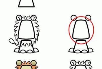 Como desenhar um leão? Análise de composição corporal e a etapa