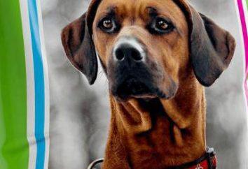« Fitokaltsevit » pour les chiens: un complexe de vitamines pour maintenir la santé pour animaux