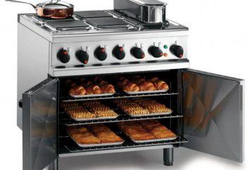 Qual forno é melhor – a gás ou elétrico? O forno para escolher – a gás ou elétrico?