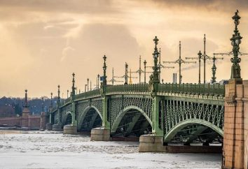 Ponti di San Pietroburgo: le foto con titoli e descrizioni