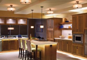 Necesito una lámpara en la cocina: ¿qué elegir?