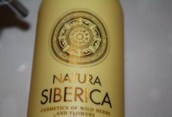 """Diferentes shampoos """"Siberika"""": comentários, dignidade"""