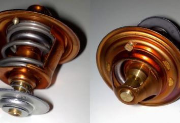 O sistema de arrefecimento VAZ-2107: manual, reparação