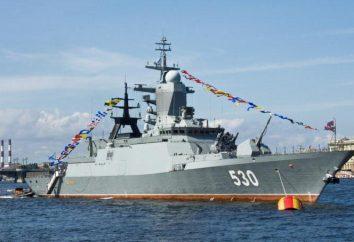 La Armada Rusa. La Armada Rusa