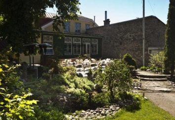 Le migliori Tallinn ristoranti: foto e recensioni