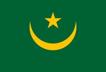 Ver Bandera de Mauritania, el valor de la historia