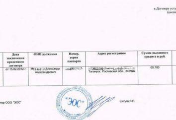 Comentarios: EOS – Agencia de Cobro (Moscú, Rusia). servicios de recolección