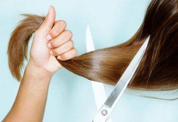 Posso ottenere un taglio di capelli di Domenica? presagi Folk, consigli