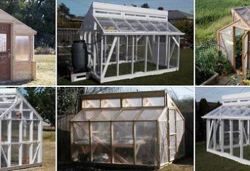 Como hacer un invernadero fuera del marco de la ventana con las manos?