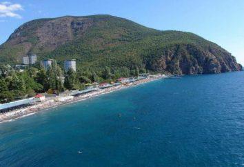 Die besten Hotels in Pitsunda am Strand: eine Liste, Beschreibung und Bewertungen