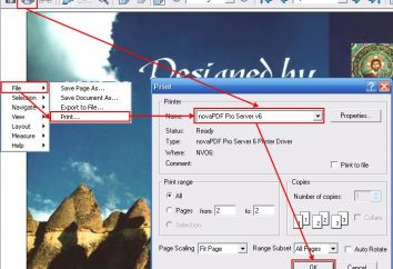 Wie DJVU in PDF konvertieren?