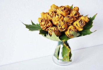 Lecciones de la floristería. Cómo hacer flores de las hojas?