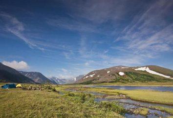 Régions de l'Oural: caractéristiques et fonctionnalités