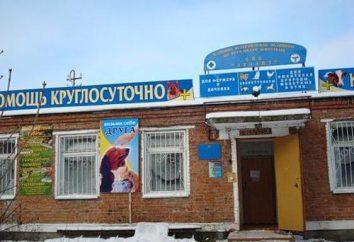 Schronisko dla zwierząt w Vladimir – miejsce, gdzie można znaleźć przyjaciół