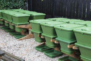Uprawa i hodowla robaków jako firma. Czy to możliwe, aby hodowli robaków w domu?