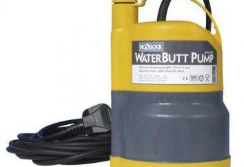 Pompe per il pompaggio di acqua dal pozzo: descrizione e specifiche