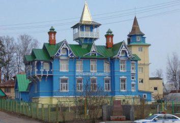 Vyritsa (region leningradzki) – wspaniała miejscowość wypoczynkowa