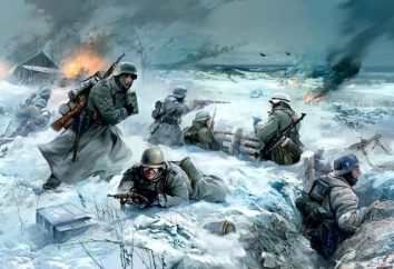 ¿Cuántas personas murieron en la Segunda Guerra Mundial en la URSS y en el mundo