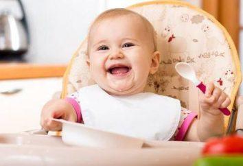 """Kasha """"Baby Sitter"""": opinie rodziców i pediatrów"""