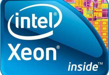 Procesor Intel Xeon E5450: przegląd, specyfikacje, opisy i recenzje