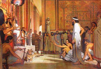 Babiloński król Hammurabi i jego prawa. Który bronił praw króla Hammurabiego?