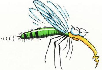 A proposito di tutto: quante vite una zanzara?