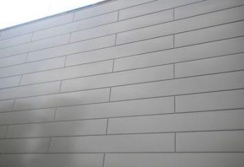 Wandpaneele für das Haus – einfach, schön und wirtschaftlich!