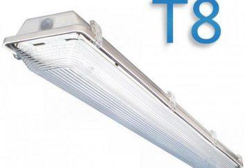 T8 lâmpada fluorescente e LED T8 lâmpada, características, dimensões, conexão. T8 para aquário