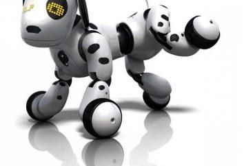 """Dog """"Buzzer"""" (Zoomer): instrukcje i informacje zwrotne"""