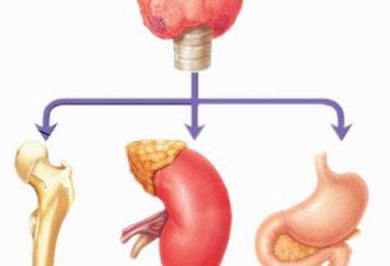 Hiperkalcemii: objawy, przyczyny i leczenie choroby