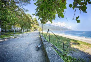 """Abkhazie, Gagra, """"Midel-Gagra"""" (maison d'hôtes): description, photos, commentaires et loisirs"""