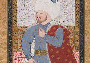 Otomanos. sultões turcos Dynasty