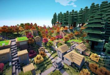 Comment installer un mod pour Minecraft – une description détaillée de