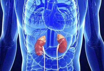 Hyperfonctionnement des glandes surrénales: Causes, symptômes, diagnostic et traitement
