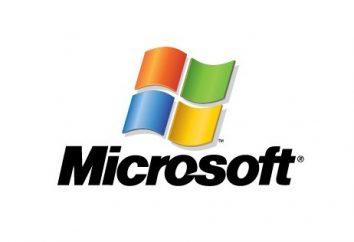 Software: esempi. Sviluppo di software